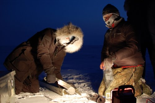 Kaiti and Josh sampling sea ice