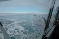 Sea Ice at Point Barrow, Chukchi Sea 2008